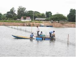 Monitoring pond water quality to improve shrimp and fish production