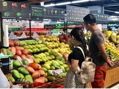 Việt Nam's fruit and vegetable export value falls in 11 months