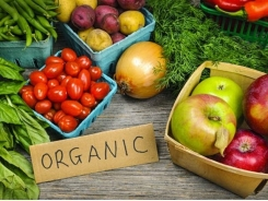 Organic produce exporters explore global opportunities