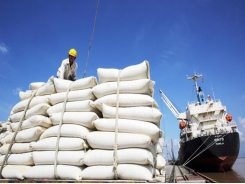 Vietnam exports 638,000 tonnes of rice in the first two months