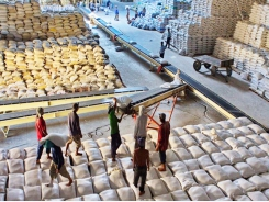 Việt Nam ships 638,000 tonnes of rice abroad in Jan-Feb