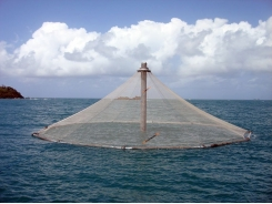 Do you know offshore aquaculture when you see it?