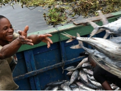 Aquaculture leads fish production, consumption to new highs