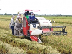 Vietnam agri firms seek cooperation opportunities in Switzerland