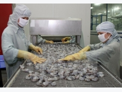Vietnam Aquaculture Expo & Forum to open in Can Tho