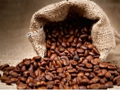 VN seeks to perk up value of coffee products