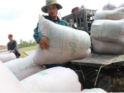 Traders mull partnership to sell Vietnamese rice in Chinese supermarkets