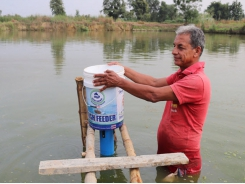 Testing low-cost demand carp feeders in Nepal