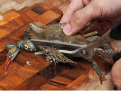 How to Clean Soft-Shell Crabs