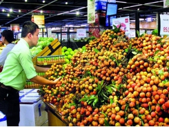Hanoi project yields fruit for consumers