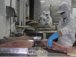 Export of many key fishery products decreased