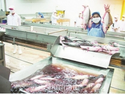 Exports of seafood unlikely to reach $10 billion