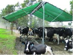 Raising Livestock: Keeping your livestock cool this summer