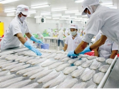 Jan-Oct tra fish exports exceed total exports of 2017