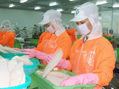 Vietnams pangasius export value slides for ninth consecutive month