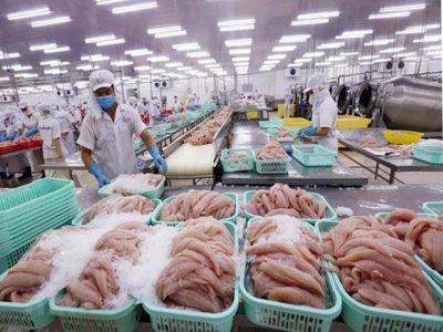 Coronavirus outbreak to hit Vietnams pangasius, shrimp exports in short-term