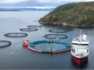 Cermaq to trial closed-containment salmon farm
