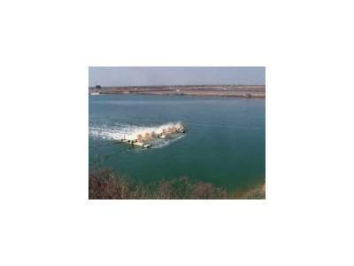 Silic, tảo cát trong nuôi trồng thủy sản