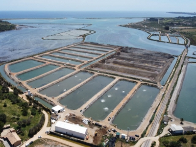 Giving fish farmers the edge in data management