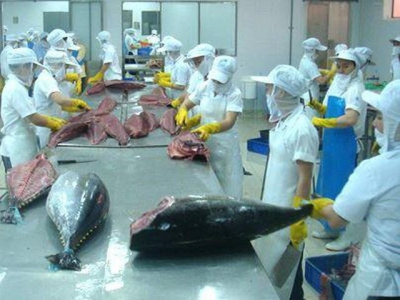 EU, US consumers keen on Vietnamese tuna and shrimp