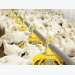 Poultry performance improves over past decades