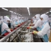 Efforts made to control disease safety in shrimp exported to Australia