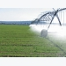 Smart irrigation saves water