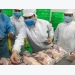 Ho Chi Minh city retail outlets sell traceable chicken meat, eggs