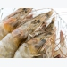 Fish-oil-free shrimp diets may benefit from DHA additive inclusion