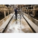 US dairy sector concentrates to lower feed, production costs, expand exports